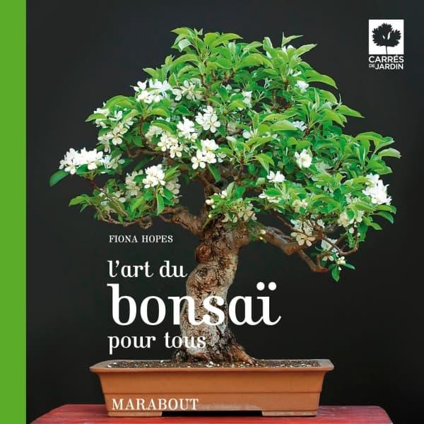 livre entretien bonsai coussin pour banquette ext rieure. Black Bedroom Furniture Sets. Home Design Ideas