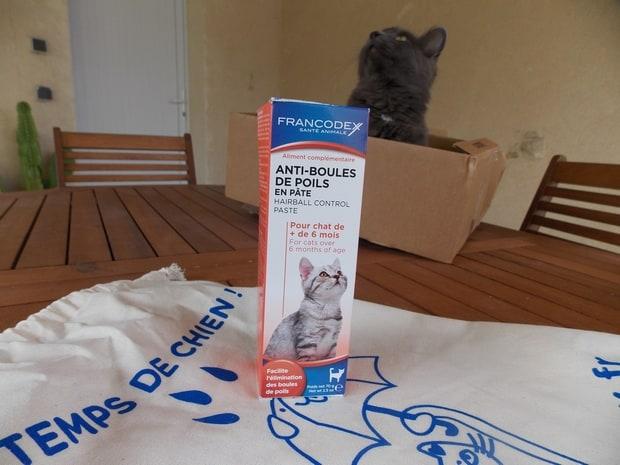 kittybox2