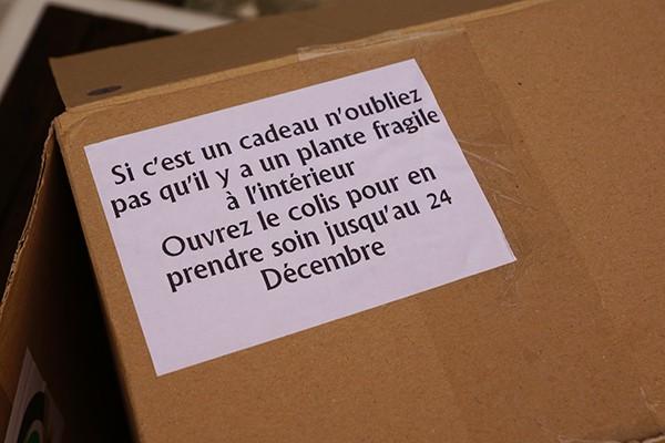 eden box decembre 1
