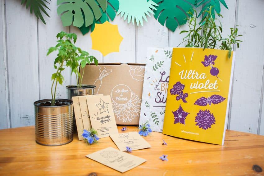 la box planter faites pousser vos propres l gumes. Black Bedroom Furniture Sets. Home Design Ideas