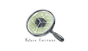 nature curieuse logo