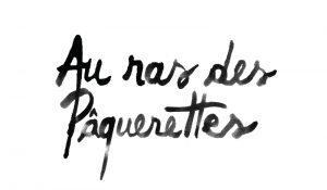 logo_aurasdespaquerettes