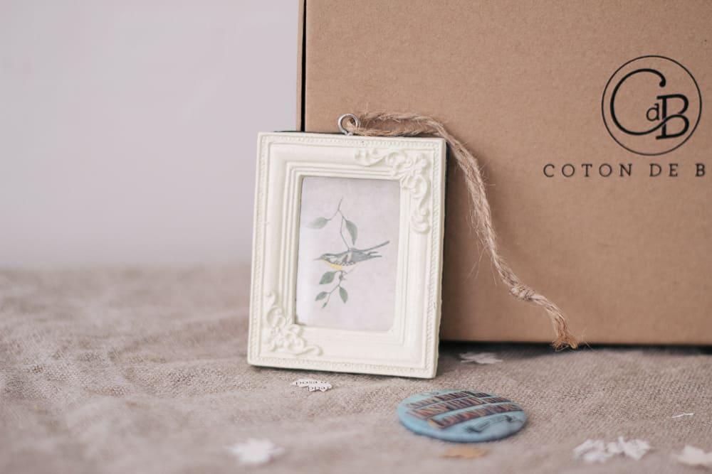 cotondebois-automne2016-9