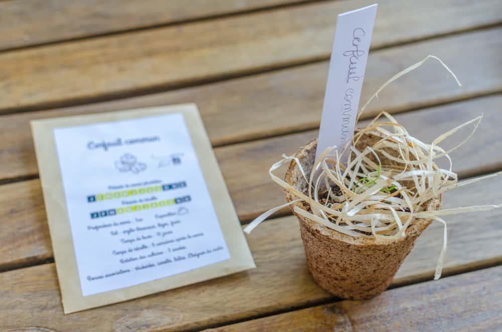 Greenabox de juin: Saveurs d'été