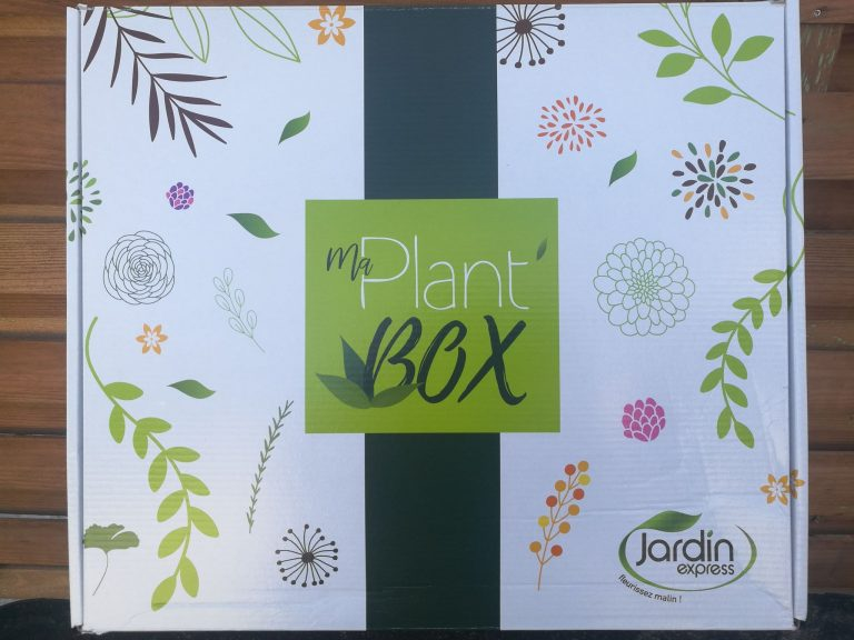 ma plant box