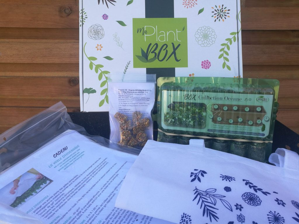 ma plant box collection oceane