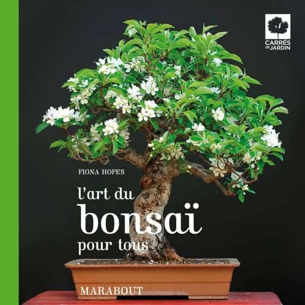 BonsaiBook