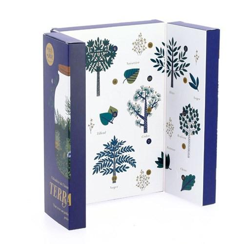 Un calendrier de l'avent sous forme de Terrarium