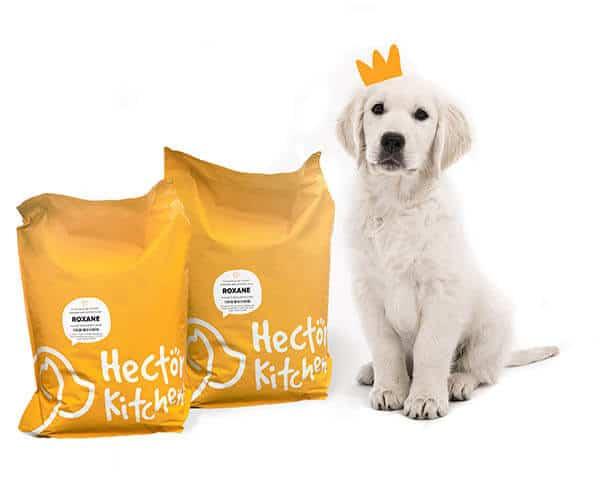 Hector Kitchen : les croquettes premium personnalisées pour votre chien