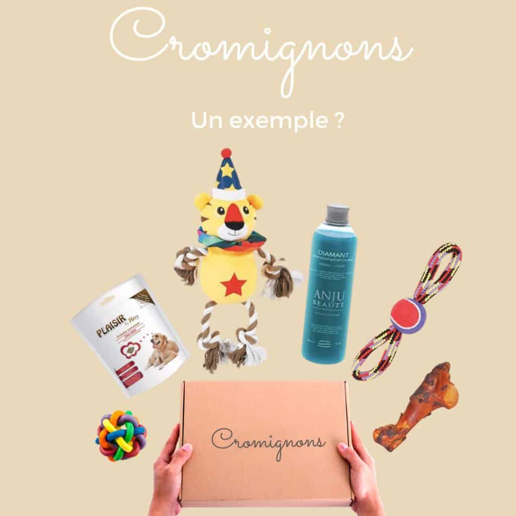 Les produits de la Box Cromignons