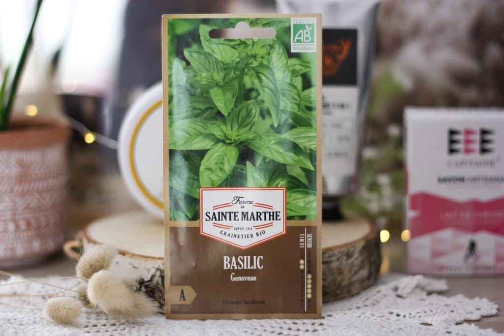 graines-basilic-bio-sainte-marthe