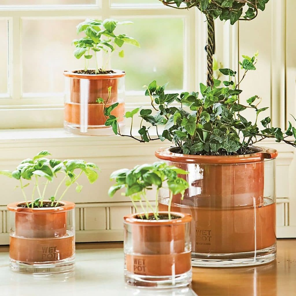 Un cadeau d'intérieur pour les plantes qui prennent soin d'elles