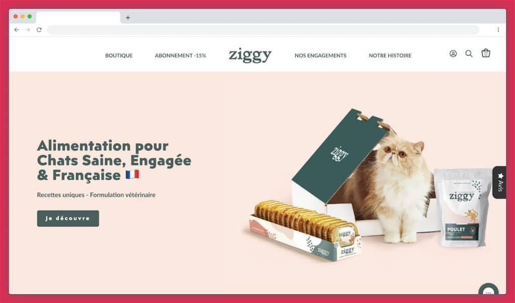 Ziggy, les rois de l'alimentation humide