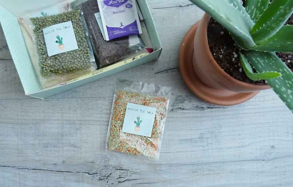healthy mini box ayurveda
